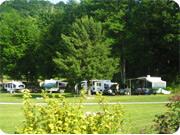 Camping la forêt de Freligh